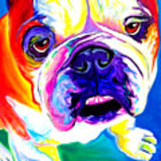 Bulldog - Stanley Art Print by Alicia VanNoy Call
