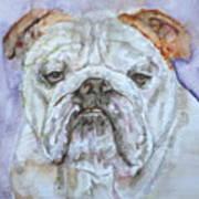 Bulldog - Watercolor Portrait.5 Art Print
