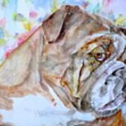 Bulldog - Watercolor Portrait.7 Art Print