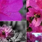 Bumblebee Bonanza Art Print