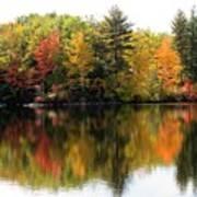 Bunganut Lake Maine Foliage 10 2016 Art Print