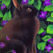 Bunny And Violets Art Print