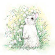 Bunny In White Art Print