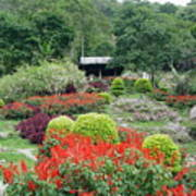 Burma Village Garden Art Print