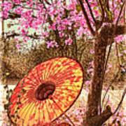 Burmese Spring Art Print
