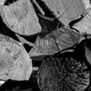 Burned Wood In The Pile Art Print