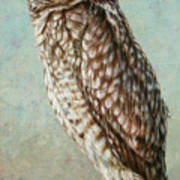 Burrowing Owl Art Print by James W Johnson