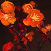 Bursting Into Bloom Art Print