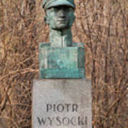 Bush Behind Piotr Wysocki Bust Art Print