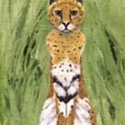 Bush Cat Art Print