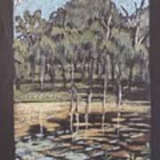 Bush Dam Impression Art Print