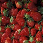 Bushel Of Strawberries Art Print