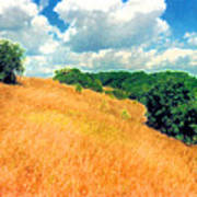 Bushes On A Hill Ae Art Print