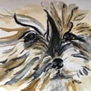 Buster Art Print