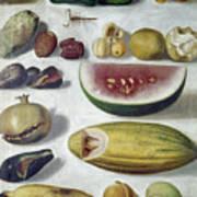 Bustos: Still Life, 1874 Art Print