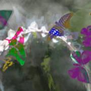 Butterflies And Dew Art Print