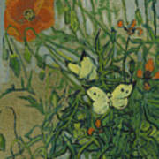 Butterflies And Poppies, 1890.  Art Print