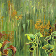 Butterflies In The Bog Art Print