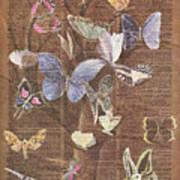 Butterflies On A Tree Art Print
