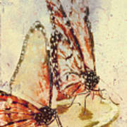 Butterflies On An Orange Slice Art Print