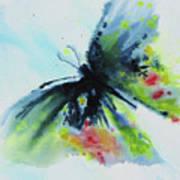 Butterfly 1 Art Print