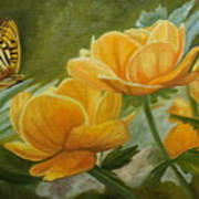 Butterfly Among Yellow Flowers Art Print