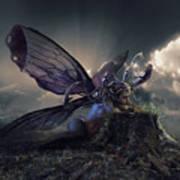 Butterfly And Caterpillar Art Print