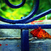 Butterfly At The Gate Art Print