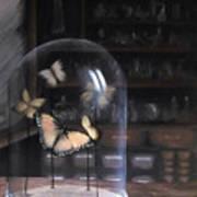Butterfly Belljar  Art Print