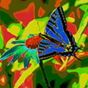 Butterfly Blues Art Print