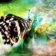 Butterfly Daydream Art Print