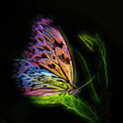 Butterfly Fantasy 2a Art Print
