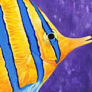 Butterfly Fish Art Print