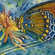 Butterfly In Ca Art Print