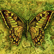 Butterfly In Greens-amber Collection  Art Print