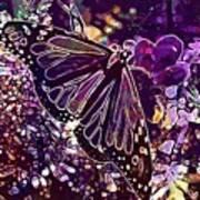 Butterfly Monarch Flower  Art Print