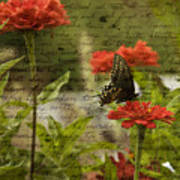 Butterfly Notes Art Print