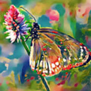 Butterfly Of Paradise 1 Art Print
