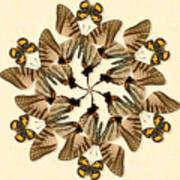 Butterfly Wheel Dance Art Print