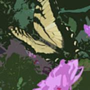 Butterfly's Delight Art Print