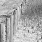 Bw Fence Line Art Print