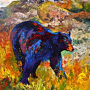 By The River - Black Bear Art Print