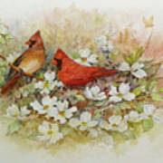 Cardinals and Dogwood  Art Print