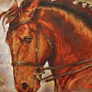 Caballo I Art Print