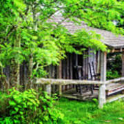 Cabin At The Top Mt Leconte Art Print