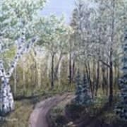 Cabin Road Art Print