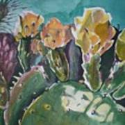 Cactus Blossoms In Desert Art Print