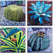 Cactus Close Ups Art Print