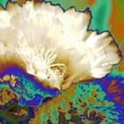 Cactus Moon Flower Art Print