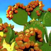 Cactus Pears Art Print